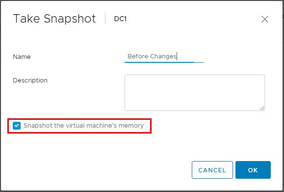 Snapshot VM memory