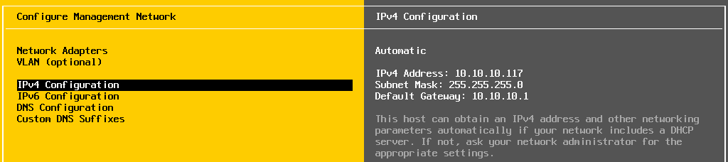 Checking IPv4 configuration on an ESXi host