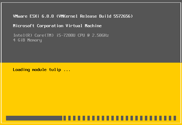 ESXi installer is loading the modules