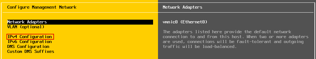 IPv4 Configuration of the network adapter used by an ESXi Server.