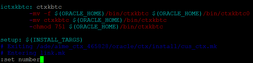 Viewing the ins_ctx.mk file in vim to fix the Oracle installation error