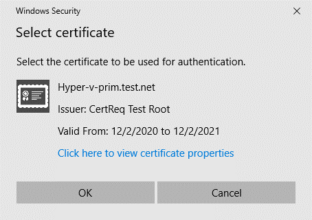 SSL certificate request on a main Hyper-V server