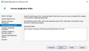 Selecting virtual disks to replicate