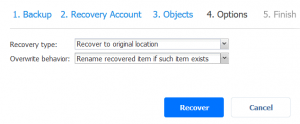 Selecting the recovery type and overwrite behavior in recovery options