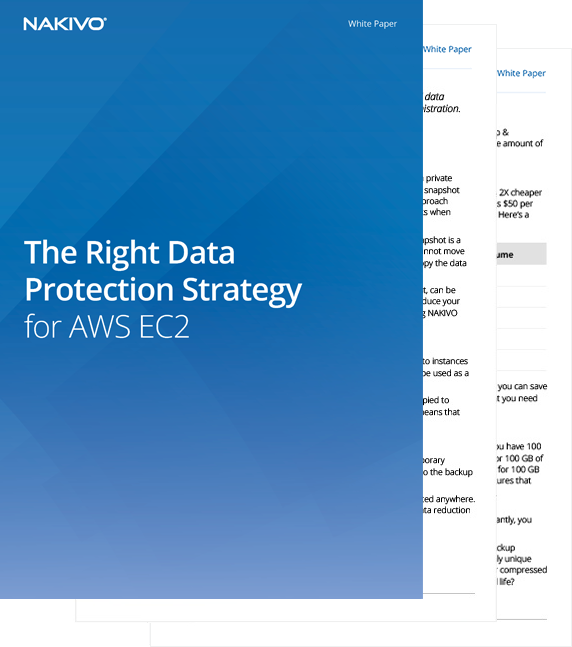 White Paper: The Right Data Protection Strategy for AWS EC2